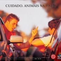 animaisnapista72dpi